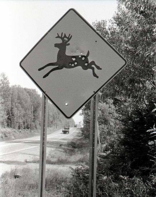 DeerSign.jpg