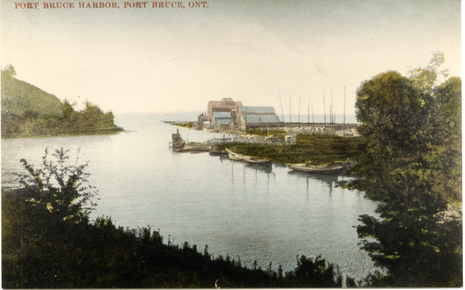 Harbour PostCard.jpg